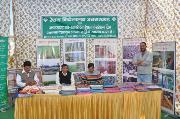 Photographs of Sericulture Activities